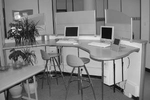 Borgerkonsulent - hjælp til den digitale forvaltning!